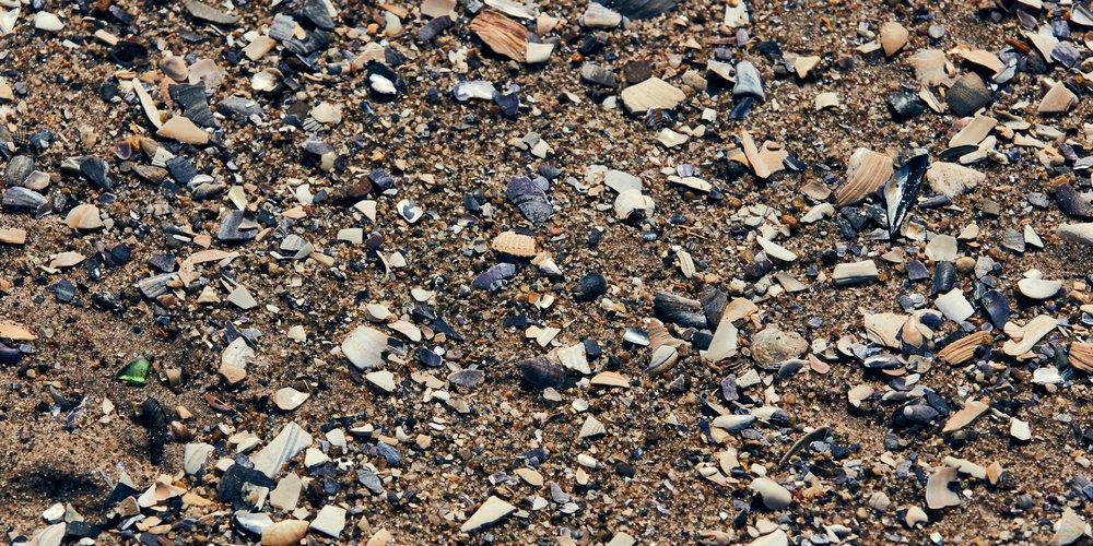 Nesteruk-180306-ConeyIsland-Cold-0175-1.jpg