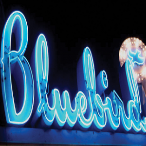 bluebird-theater_denver_05-13-14_60_5371756fed333.png