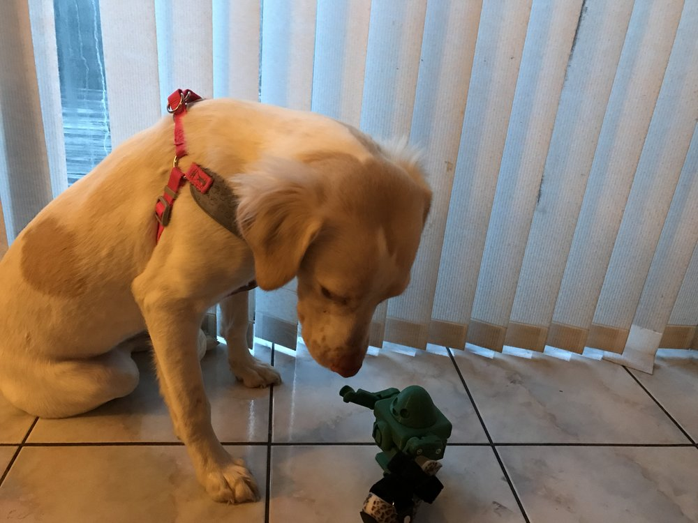 Moxie with 3DPO.