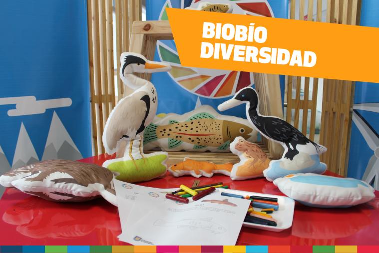 Bases talleres Biobiósfera (2).png