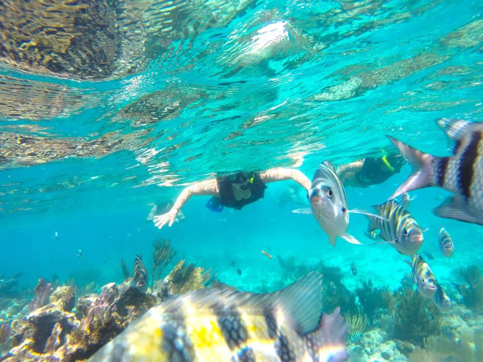 gopro-myan-riviera-snorkeling.jpg