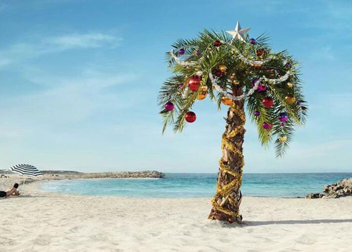 christmas-palm02.jpg