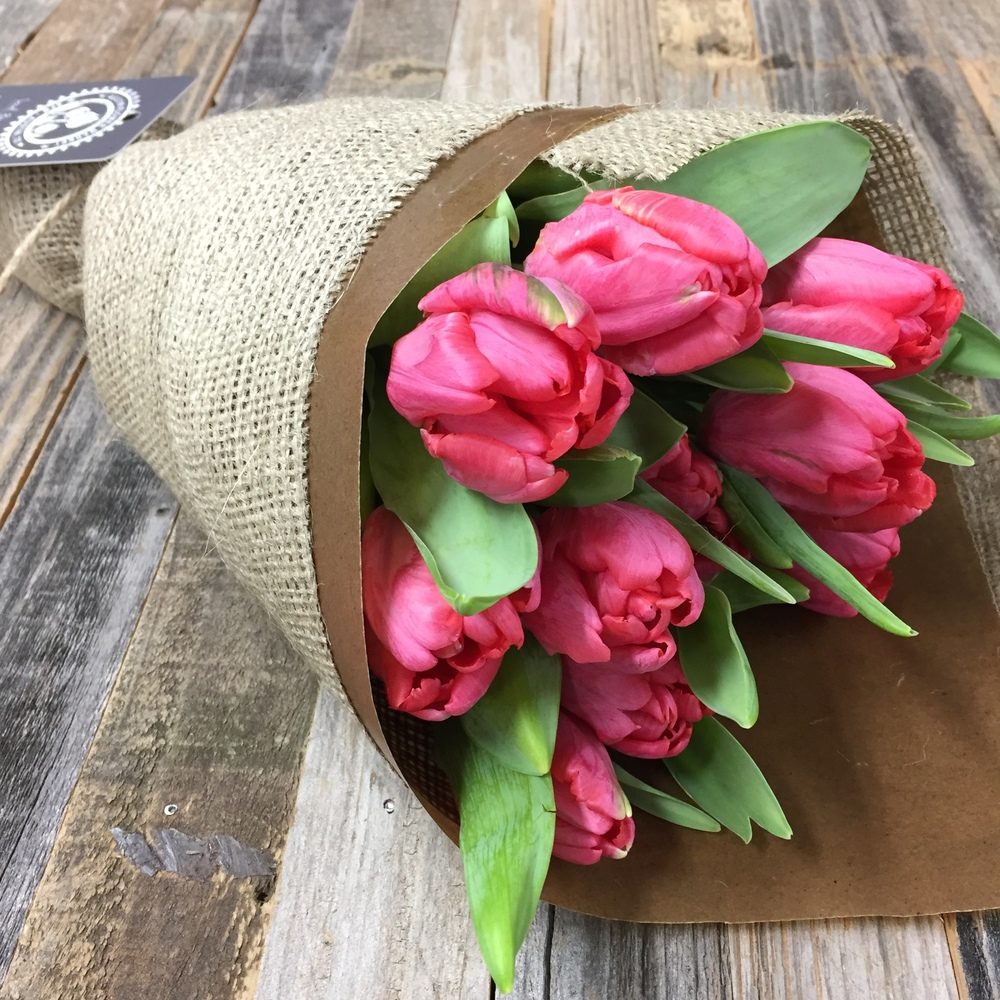 Tulip Market Wrap