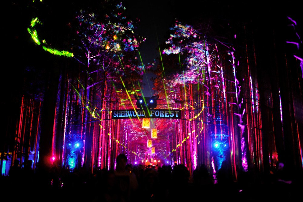 Why We Love Electric Forest                                                                Meghan Hargaden