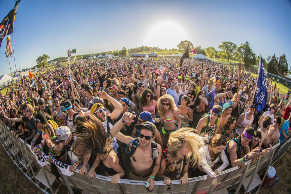 CounterPoint 2014 - Kingston Downs