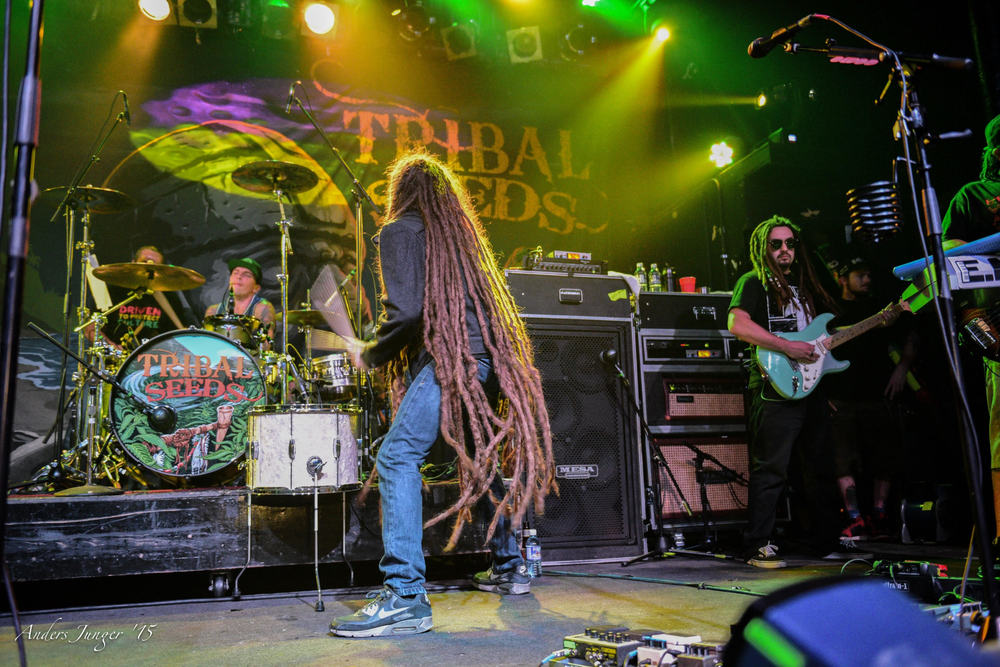 Gettin' Irie. Photo by  Anders Junger
