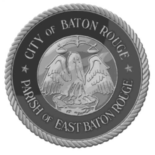 city of br.png