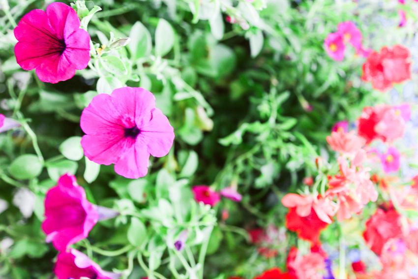 Boulder_Blog-111.jpg