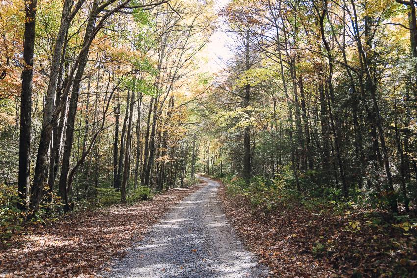 North Georgia-9.jpg