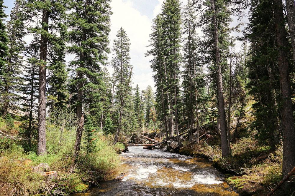 Wyoming-24.jpg