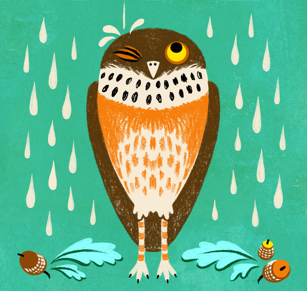 Soggy Owl - Submission for 2014