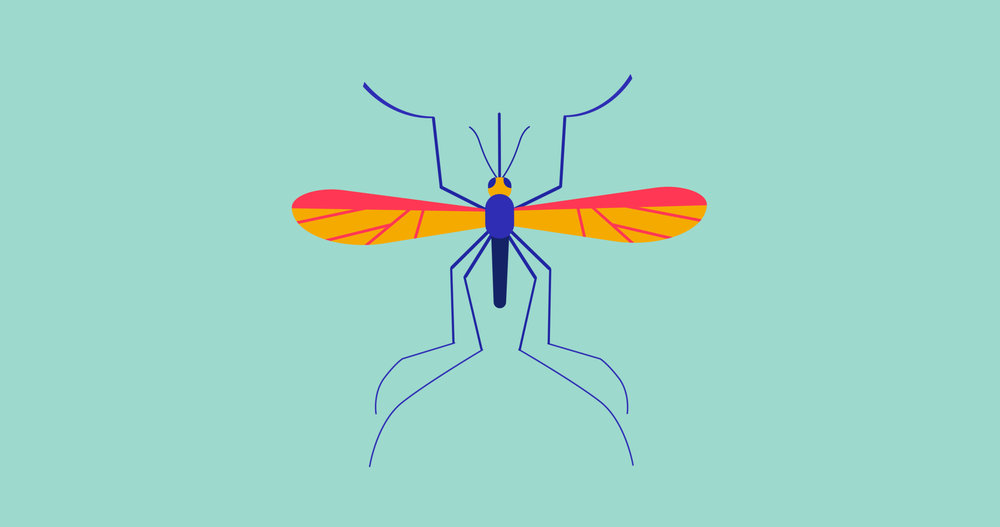 Mosquito_Cover1.jpg