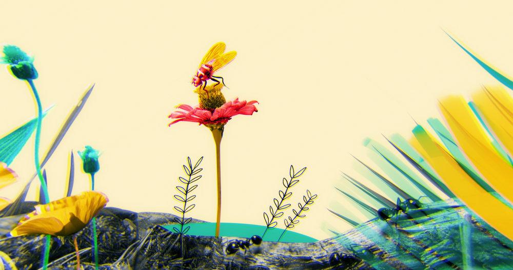 TED: DIY Neuroscience - Dragonfly