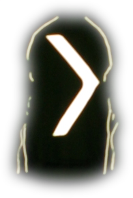 ArroWhere Single Arrow (UK/AUS-market) High Visibility Reflective Jacket (night) - 20 yards  *Results may vary.