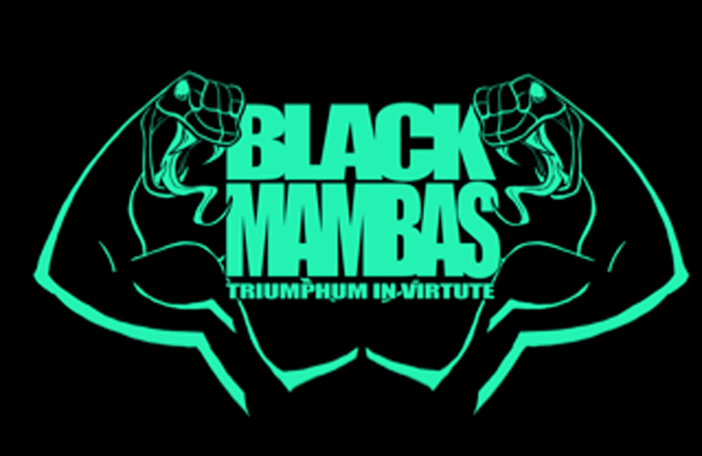 Housecup2018-blackmambas-shirt.jpg