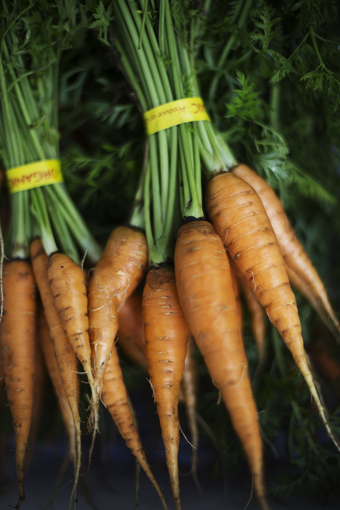carrots_lowRes.jpg