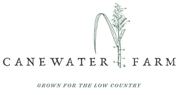 Canewater Farm