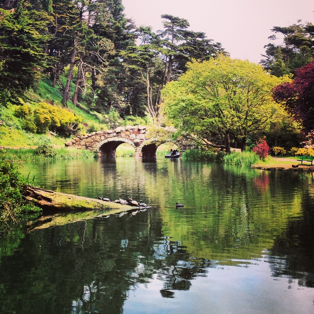 Susie says...    Stow Lake is one of the many beautiful spots hidden away, deep in Golden Gate Park. I often include it on group park runs because of its tranquility, abundance of wildlife, challenging stairs on the island and because it's rumored to be haunted! I keep hoping for a ghost sighting. No such luck...yet.