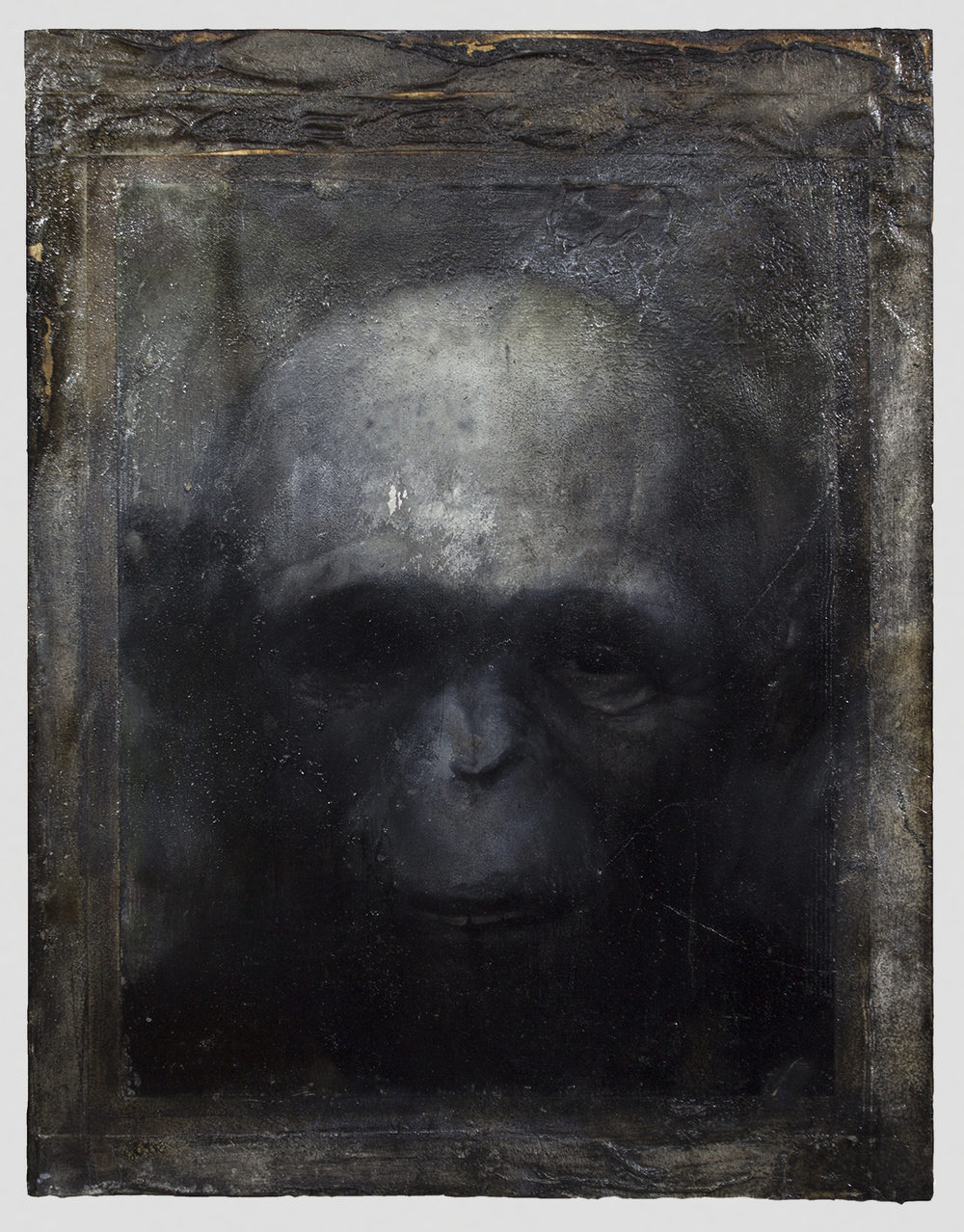 "Hominin Portrait #3  2014  18"" x 14""  Acrylic, Charcoal, Conte Crayon, Ink, Pastel, Print and Tape on paper on wood panel"