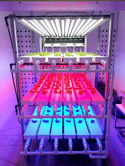 Canada's Space and Advance Life Support Agriculture program develops systems that can grow food reliably and indefinitely on the moon or on Mars but experts say the technology can also be helpful for bringing food security to Canada's North.