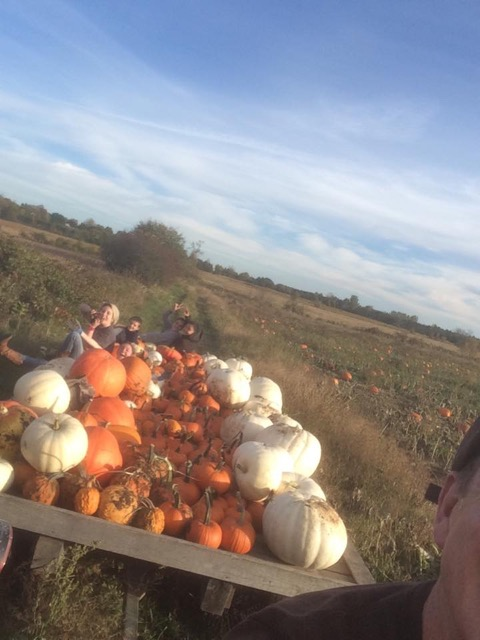 Staff_Pumpkin_Picking_Wagon.jpeg