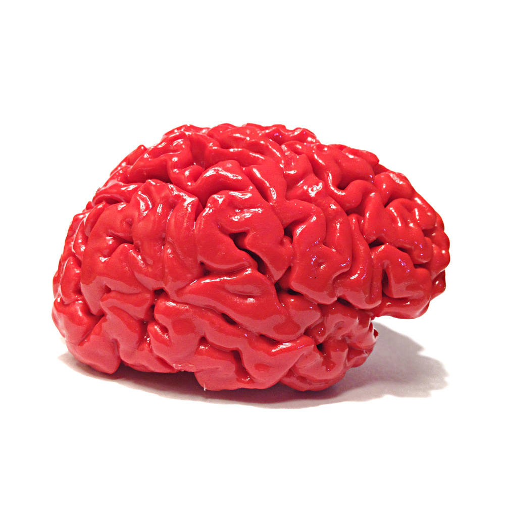 Red Acrylic Brain