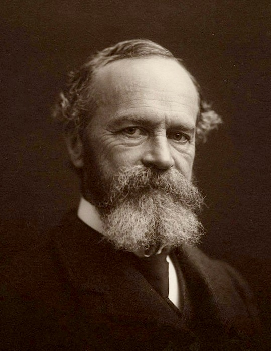 William James  (January 11, 1842 – August 26, 1910)