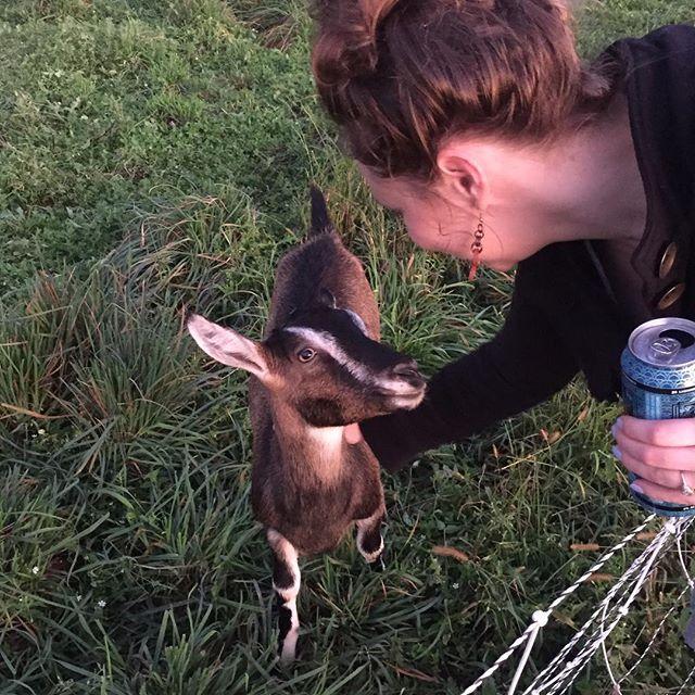 Goat friend!