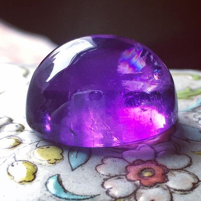 #SKOL #vikings #purplepride #purplereign #ultraviolet #nfcchampionship #minnesotavikings #amythest #coloroftheyear #bringithome