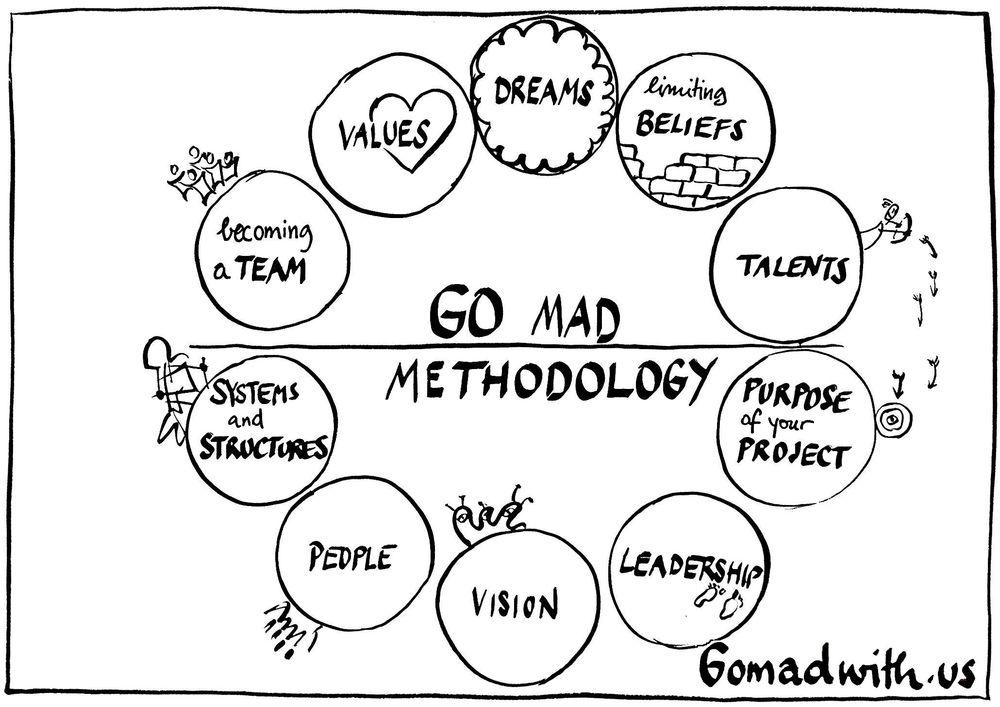 Go Mad methodology.jpg