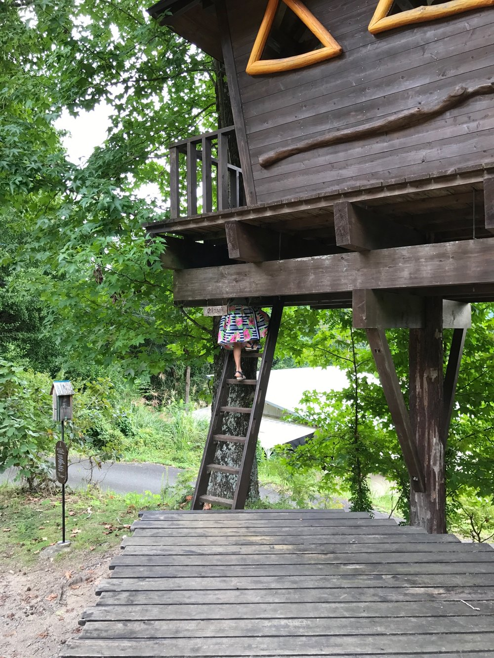 Irene climbing on the treehouse!
