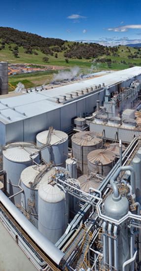 Visy Paper Mill