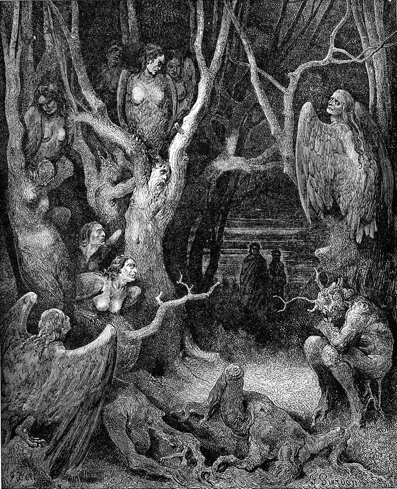 Gustave Dore 's engraving of the Harpies in the wood of the suicides.
