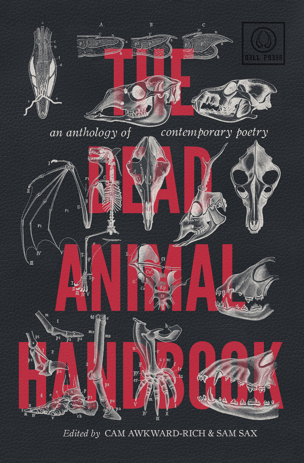 Dead_Animal_Handbook_FRONTCOVERONLY_FINAL.jpg