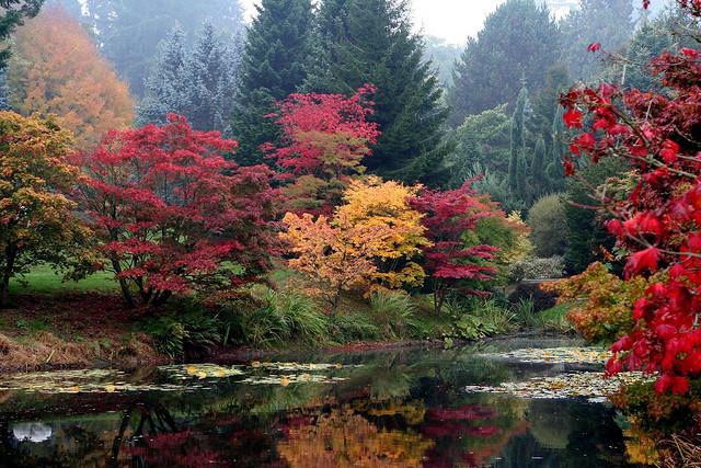 autumnmentalhealth