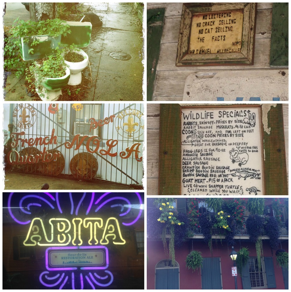 Random NOLA sights