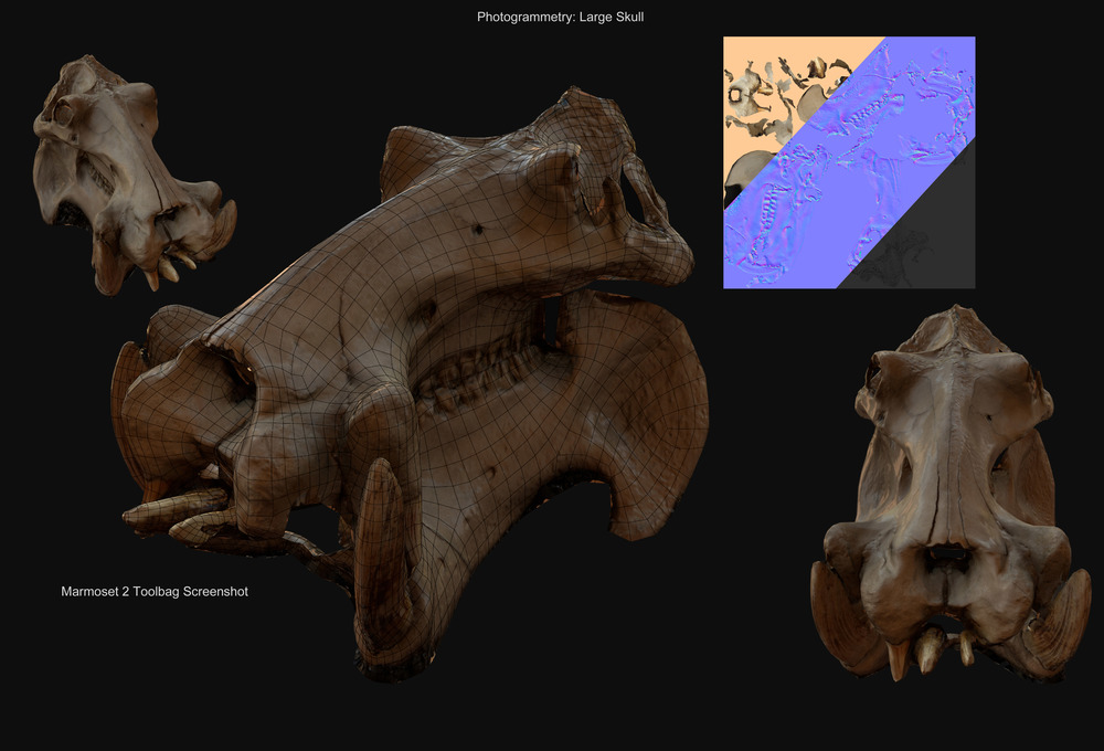 Large Skull - Model running in realtime engine. (Upper Right: Model textures) - David McDonald