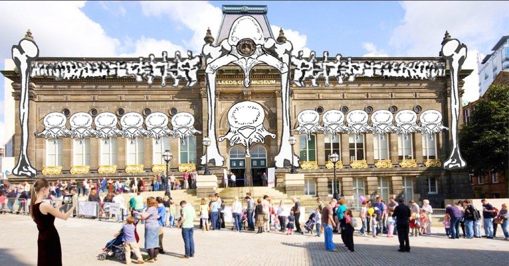 Leeds-city-museum bones3.jpeg