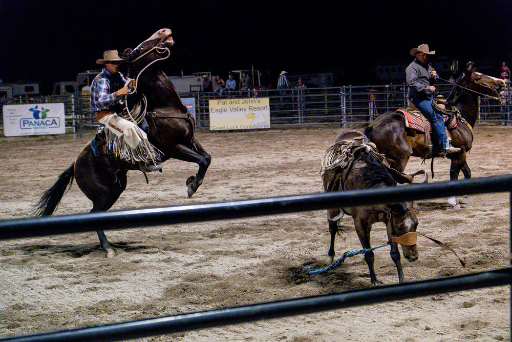 horses in rodeo lincoln county nevada