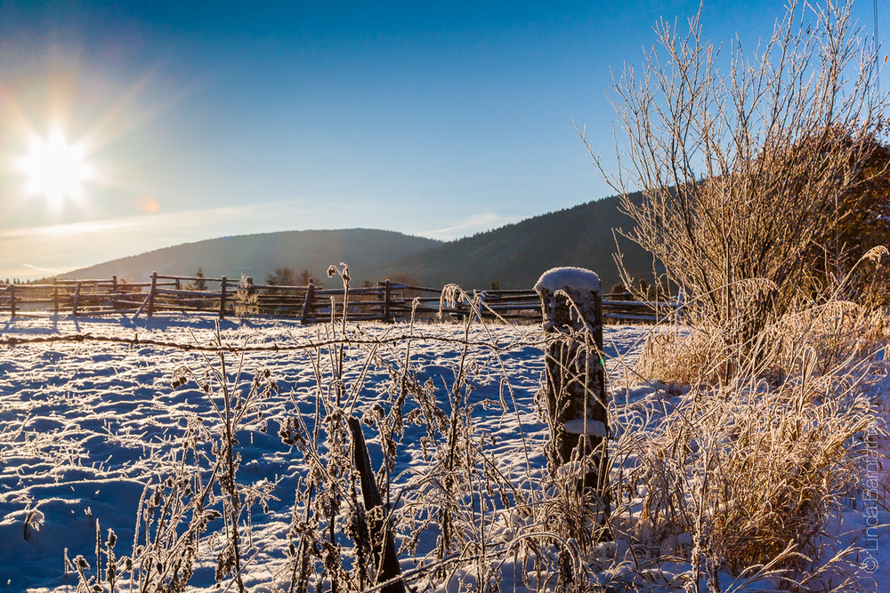 Beautiful snow and loow winter light on the fields of Happy Valley in Sequim, WA.