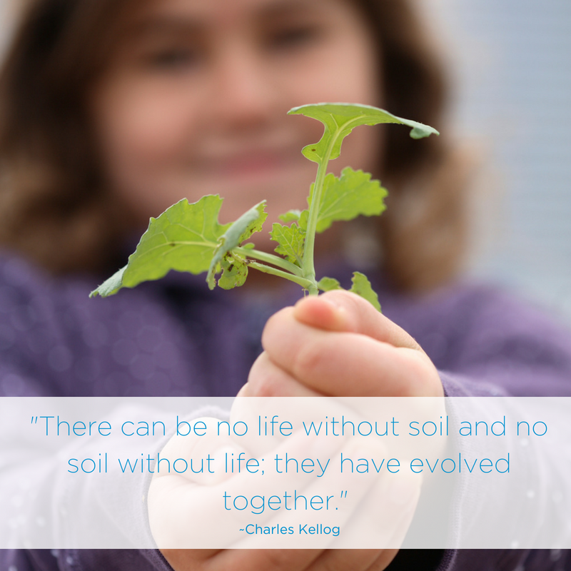 Social Media Post: Canola farmers not only make their living from the land; it is also their legacy to the next generation. That is why healthy soil, water and air are so important to them. #sustainablefarming Pic: CanolaGrowers.com