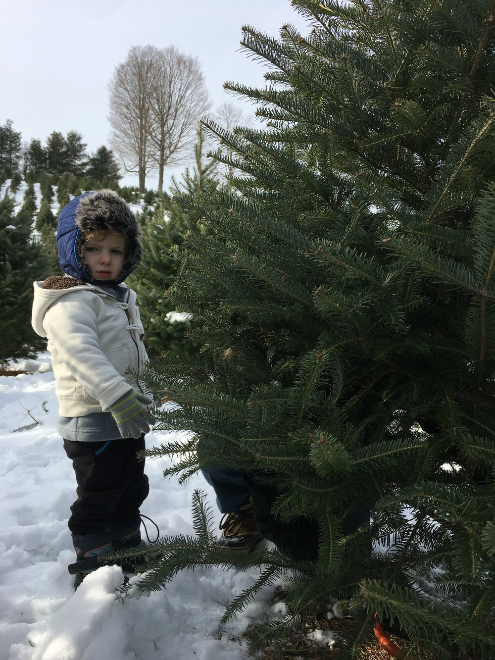 Garrison, picking out our Christmas Tree, is our Rainbow Baby. This term refers to a child born after miscarriage, stillbirth, neonatal death or infant loss.