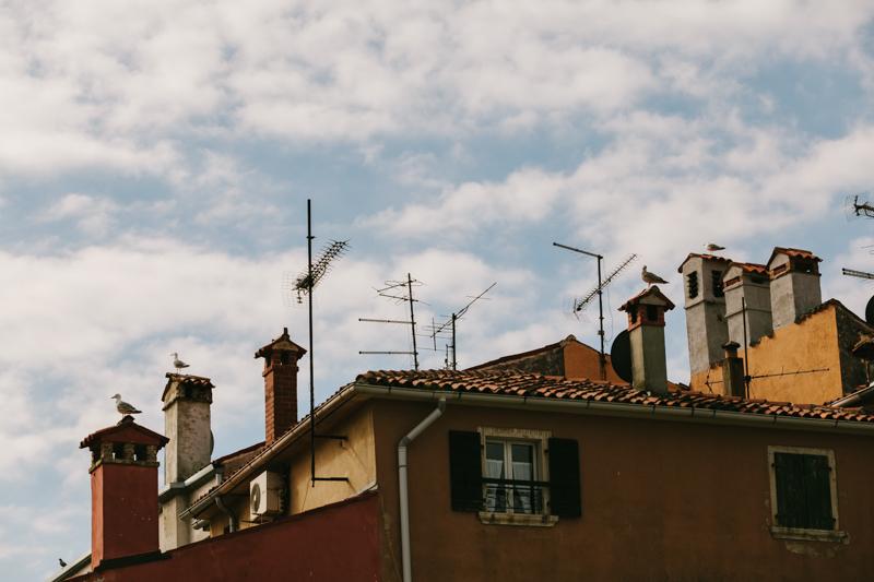 strechy0001.JPG