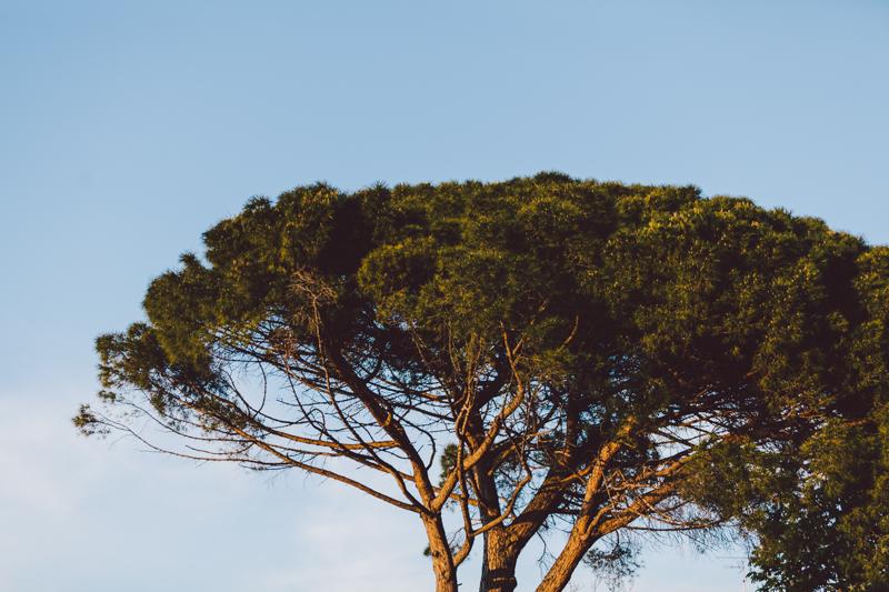 strom0001.JPG
