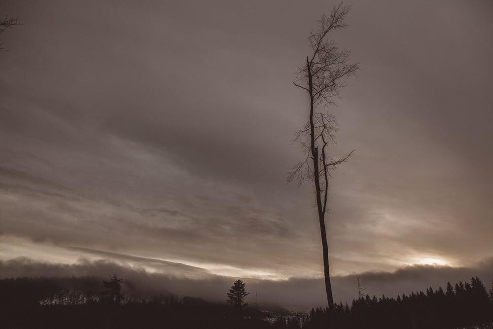 obloha-2.jpg