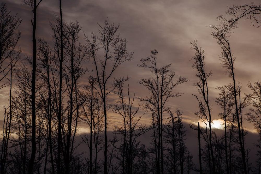 obloha.jpg