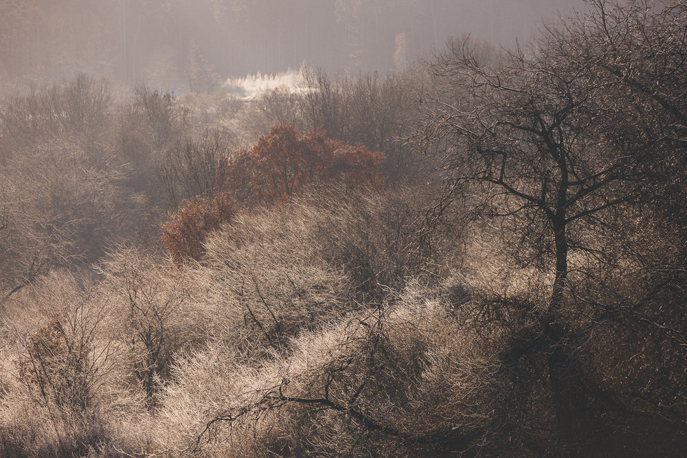 mrazivy_vikend-20.jpg