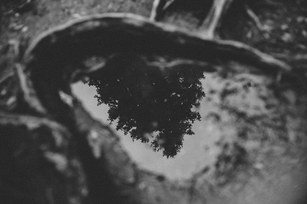 jeseniky-4.jpg