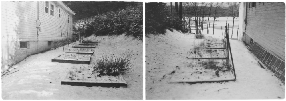 Untitled, shown as diptych