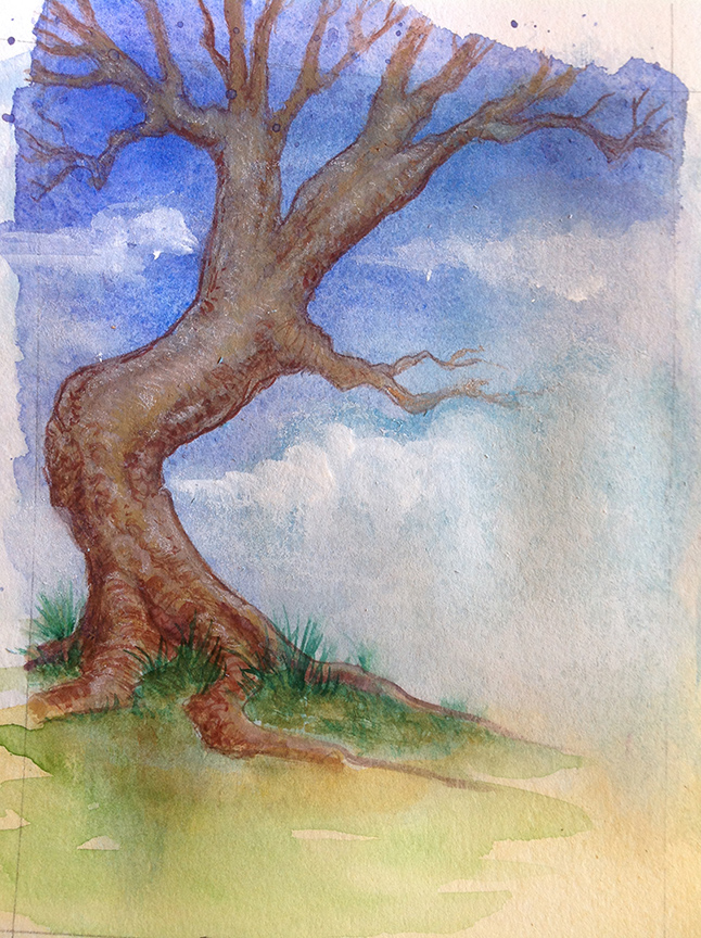 Expect this site to grow and evolve - like a tree! Deepen the roots, watch the limbs expand.